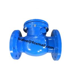 Cast Iron Swing Type Check Valve