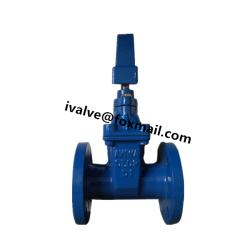 Cast Iron AWWA C509 Gate Valve