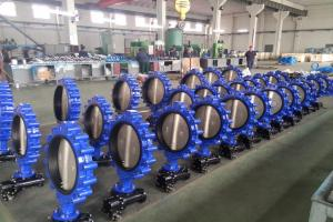 Tianjin Future Valve Co.,Ltd