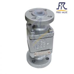 Fluorine Lined Ball Check Valve