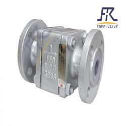 Floating Ball Type Lining PFA/FEP Check Valve