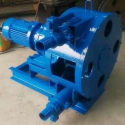 RGB Peristaltic pump hose pump slurry pump
