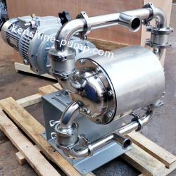 DBW food grade electric diaphragm pump