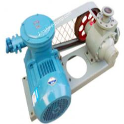 YQB LPG Transfer pump