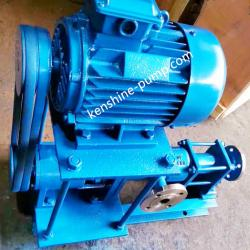 G pulley driving single screw pump