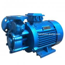 W single stage vortex pump
