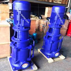 DL Vertical multistage water pump for high building
