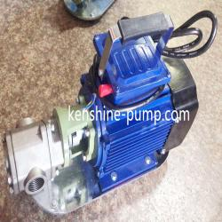 WCB portable stainless steel gear oil pump