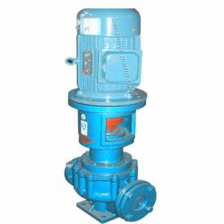 LRY Vertical heat conduction oil centrifugal magnetic pump