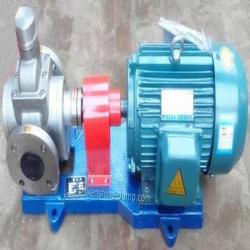 YCB Stainless steel circle arc gear oil transfer pump