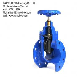 Resilient Seated Gate Valve - BS 5163 & DIN 3353 F4/F5 & ASME B16.10