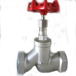 Threaded Stainless Steel Globe Valve