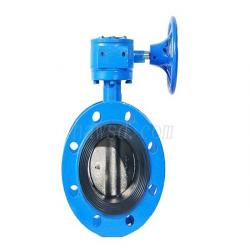 Worm Gear Operated Flange Butterfly Valve