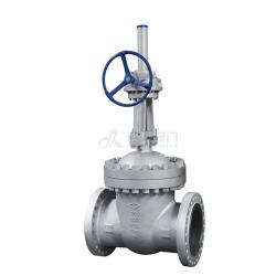 Cast steel OS&Y Gate valve