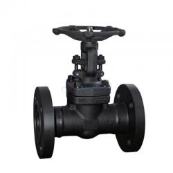 Forged steel Gate valve 800